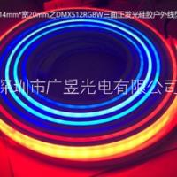 LED硅胶霓虹数码灯带2014全彩DMX512RGB(W)及单色