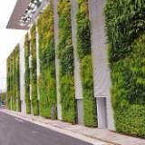 室外植物墻供應商  室外植物墻哪家好 廣東室外植物墻