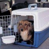 成都到衡阳货物运输 成都到衡阳行李包裹托运 成都到衡阳宠物托运