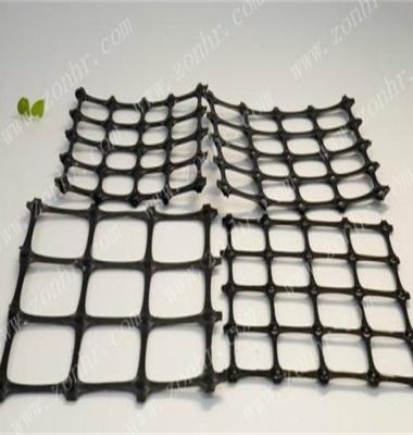 土工格栅图片/土工格栅样板图 (2)