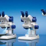 德国蔡司DV4立体显微镜