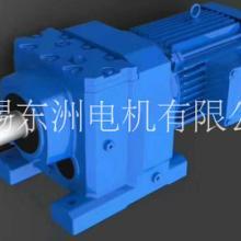 河北R系列斜齿轮减速机厂家直销 价格优惠 定制加工 东洲电机图片