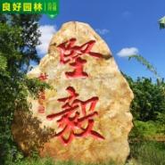 园林工程景观石 庭院园林石图片