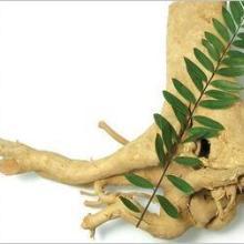 湖南生產植物提取物 寬纓酮價格 生產寬纓酮1.5% 寬纓酮1%價格圖片
