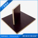 直销木胶板/建筑模板/覆膜胶合板/1220*2440*18厚