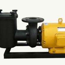 泳池过滤按摩水泵-铸铁泵系列厂家-厂家批发零售-铸铁泵系列直销